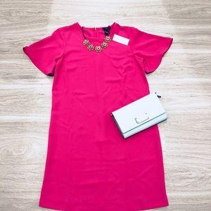 *NEW* Ann Taylor HOT Pink Shift Dress, 2P